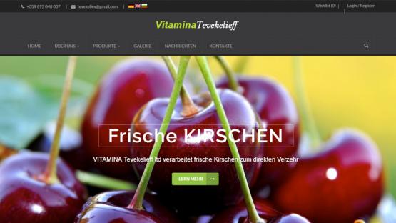 Фирмен сайт на немски език (Витамина Тевекелиев), https://webnime.com